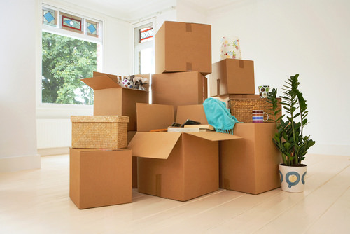 organized-moving-out